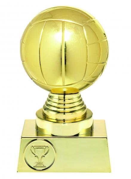 Volleyball Pokal